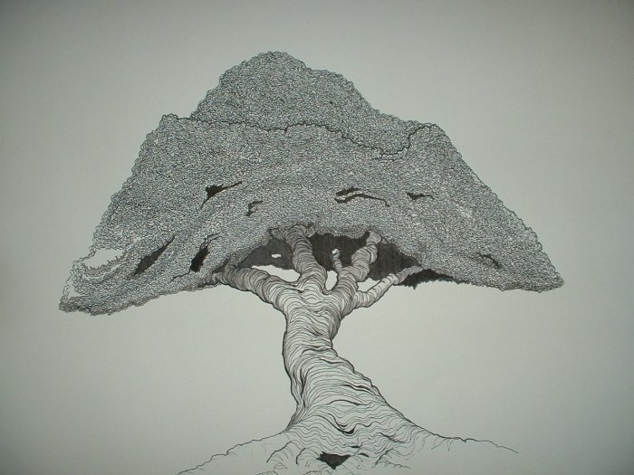 "Drawing Entitled ""Fremontii"" by Rob Original Pen & Ink"