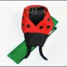 Lovely Ladybug Clip
