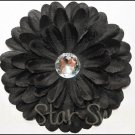 Gerber Daisy Flower- Black