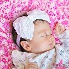 The Lush Bowband in White Rose Flower Bow Headband Christening Baptism hair flowergirl wedding