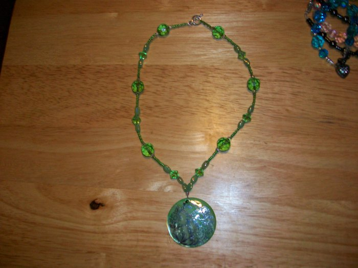 green and silver shell