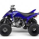 2009 Yamaha Raptor 250 VFM250R