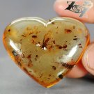 55.62 Ct.Natural Heart 37*40 mm. Perfect Insect Fossil Inside Yellow Copal