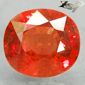 2.77 CT.Full Fire Natural Oval 7*8 mm. Vivid Hot Reddish Orange Tanga Sapphire