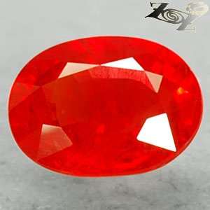 Top Grade Color Natural Oval 6*8 mm. Really Vivid Orangish Red Sapphire 1.92 Ct.