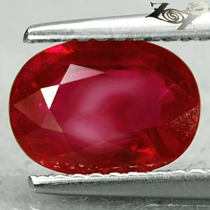 2.02 Ct.Natural Oval 6.5*9 mm. Intense Blood Pigeon Red Mogok Burma Ruby �寶�