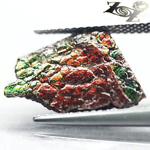 2 CT.Natural Play Red Green Blue Color Clear Dragon Skin 2 Side Ammolite Slab