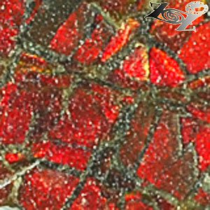 2.27 CT.Natural Iridescence Extreme Play Red Color Dragon Skin Canada Ammolite