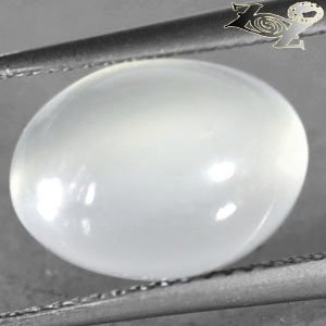 5.51 CT.Natural Oval 9*12.5 mm. Strong Cat's Eye Silky Yellowish Moonstone Gems