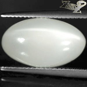 10.01 CT.Natural Oval 10*17 mm Cat's Eye Effect Silky White Oligoclase Moonstone