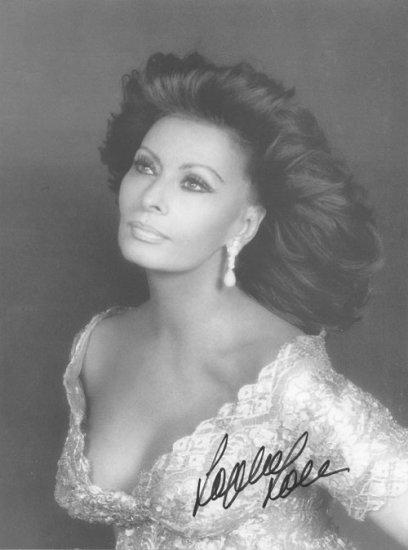 Sophia Loren Autographed Photo