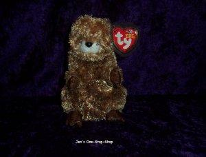 Punxsutawn-e Phil the Groundhog Beanie Baby � NWMT