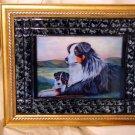 Australian Shepherd 11x14 Tile Picture
