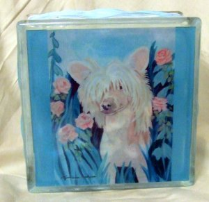 Chinese Crested 8x8 Glass Block Light