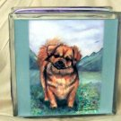 Tibetan Spaniel 8x8 Glass Block Light