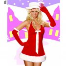 Santa's Honey Dress with Hat and Gloves Costume ( XL ) ~igemini.net~