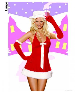 Santa's Honey Dress with Hat and Gloves Costume ( Large ) ~igemini.net~
