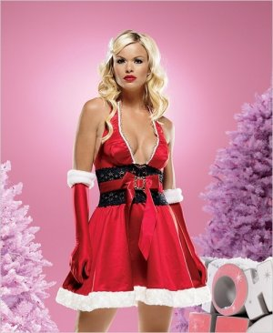 Glamorous Santa Dress Costume ( Med/Large ) ~igemini.net~