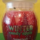 Bath & Body Works Winter Candy Apple Jar Candle Large