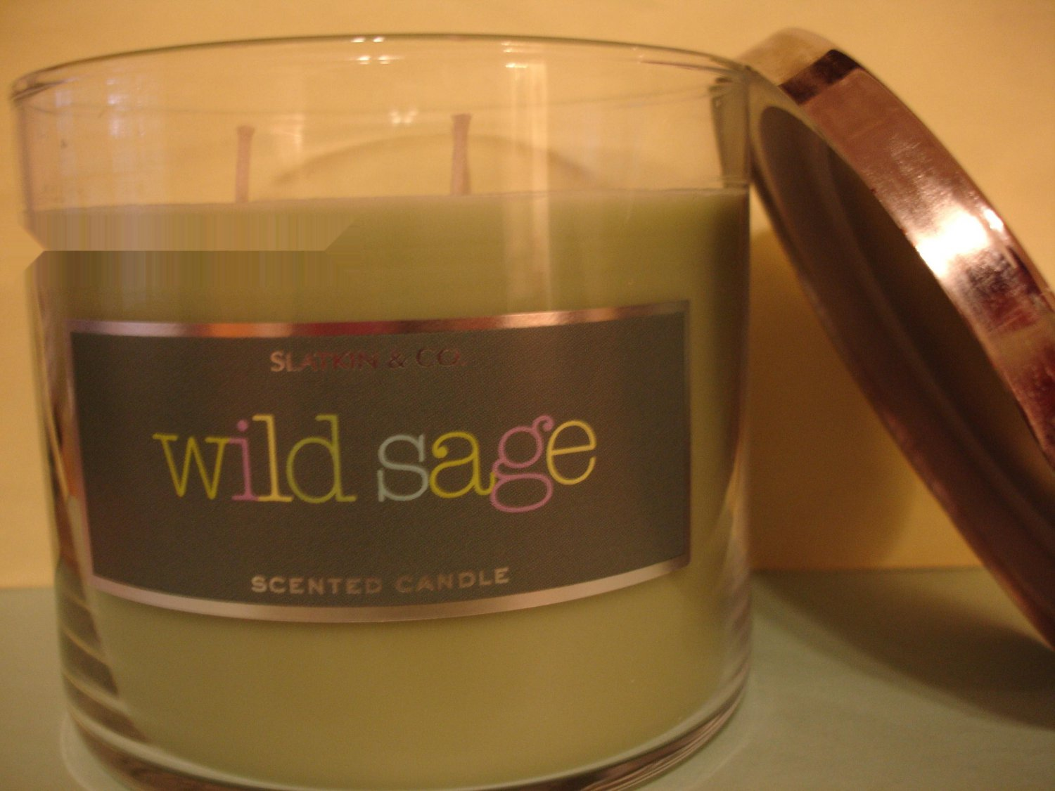Bath & Body Works Wild Sage 3 Wick Candle Large