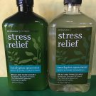 Bath & Body Works Aromatherapy Eucalyptus Spearmint Shampoo & Conditioner Full Size