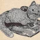 Kitten in Crochet Pattern Vintage 723007
