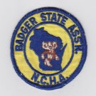 Vtg Retro Wisconsin Badger State Association NCHA N.C.H.A. Patch Badge Rare
