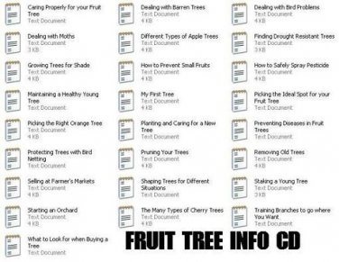 All about Fruit Trees INFO-CD