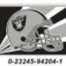 Oakland Raiders 36x60 Flag * other teams available *