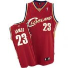 Authentic Lebron James NWT