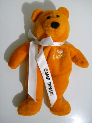 "Girl Scout ""I � Camp"" Orange Bear Camp Tanasi 2001 *RARE*"