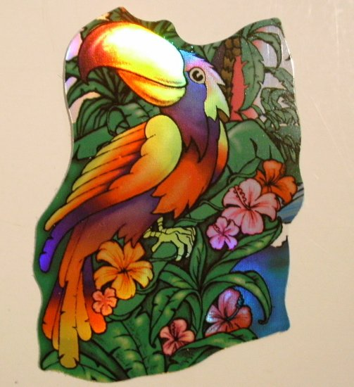 Colorful Parrot Sticker