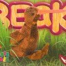 TY Beanie Baby Card # 165 Beak the Kiwi Bird-Style # 4211-2nd Ed -Ser 4-1999