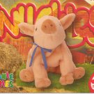 TY Beanie Baby Card # 204 Knuckles the Pig-Style # 4247-2nd Ed -Ser 4-1999