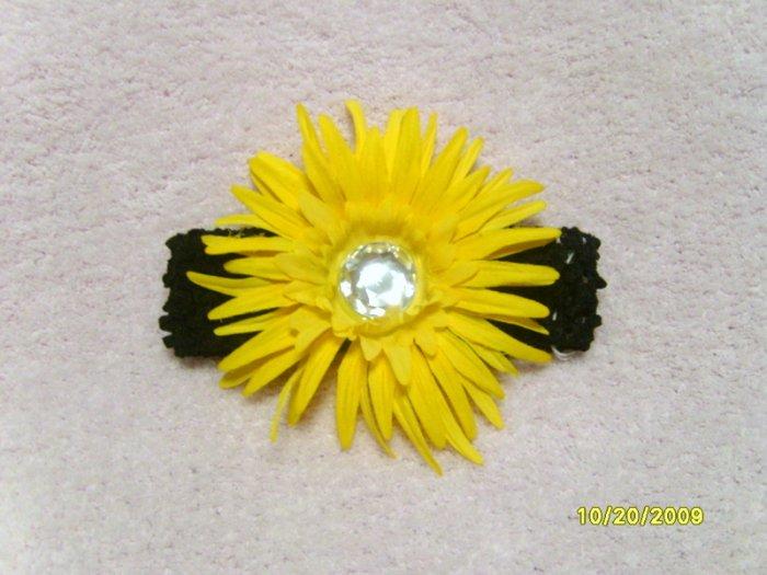 Black w/ yellow