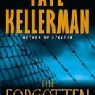 The Forgotten by Faye Kellerman 2002 pb books