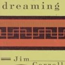 Fear of Dreaming by Jim Carroll (1993, Paperback)