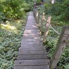 Path to happiness II