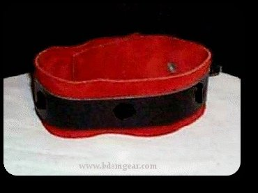 Deluxe Red Lined Ringless Collar