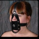 Training Post Gag with Harness