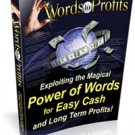 Words to Profit - ebook
