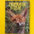 Zvierata V Lese Slovak Language Children's Book Animals Hardcover 1990 Birds