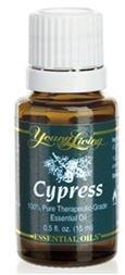 CYPRESS - 15 ML