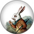 White Rabbit, Classic Alice in Wonderland 1 Inch Button Badge Pin - 0049