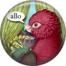 Allo, Talking Birds 1 Inch Button Badge Pin Back - 4000
