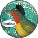 Bonjour, Talking Birds 1 Inch Pinback Button Badge Pin - 4008