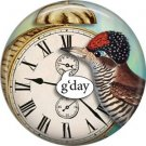 G'day, Talking Birds 1 Inch Pinback Button Badge Pin - 4010