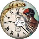 G'day, Talking Birds 1 Inch Pinback Button Badge Pin - 4010