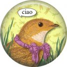 Ciao, Talking Birds 1 Inch Pinback Button Badge Pin - 4011