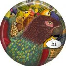 Hi, Talking Birds 1 Inch Pinback Button Badge Pin - 4012